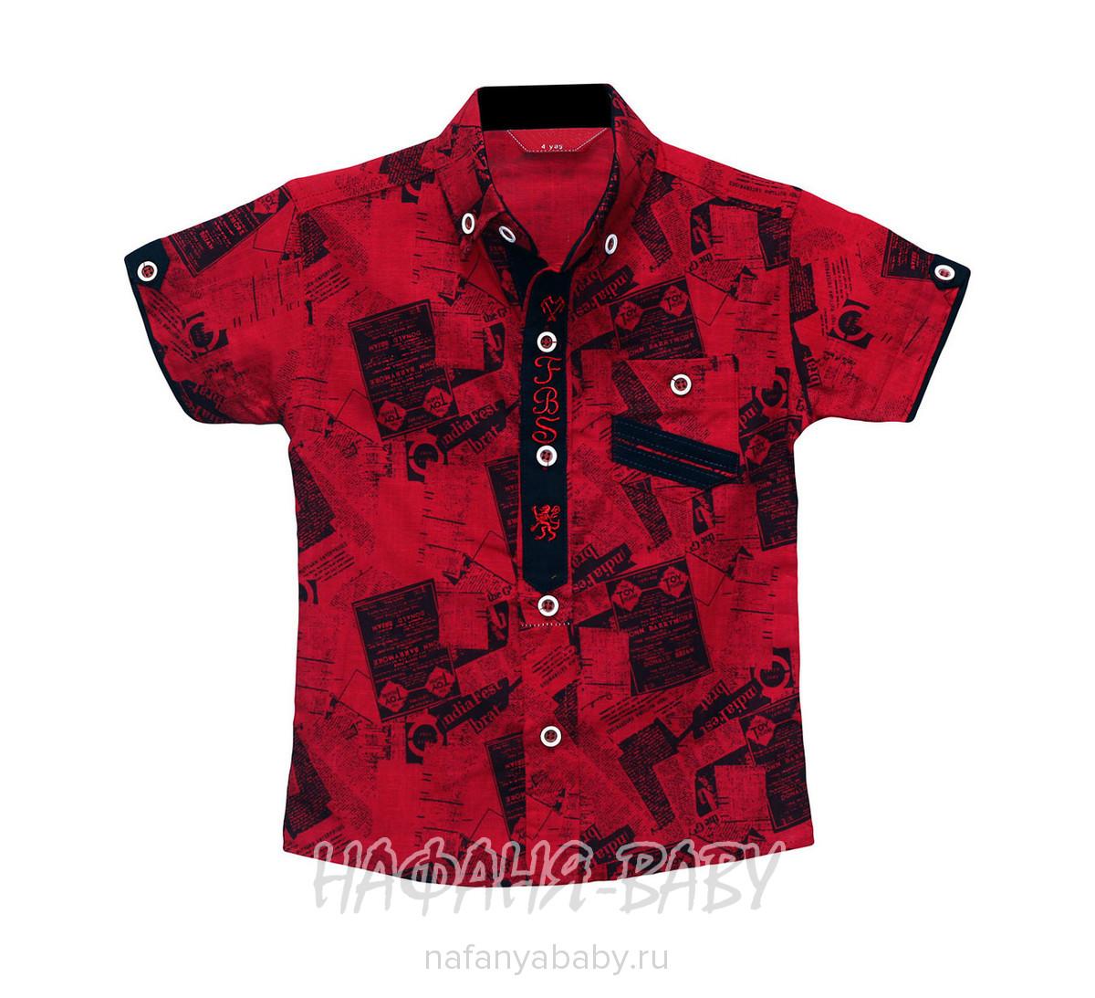 Детская рубашка FABISA арт: 112 1-4, 1-4 года, оптом Турция